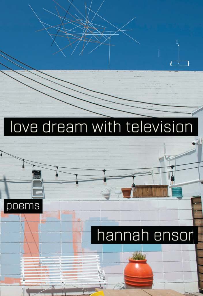 Cover: Love Dream With Television (Noemi Press, 2018)